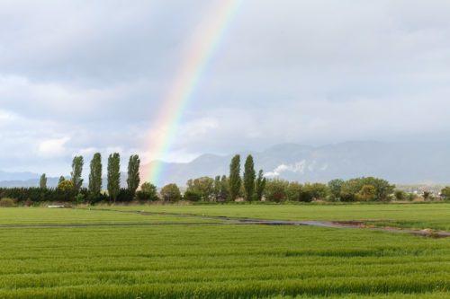 幸運の前兆の虹